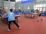 Соревнования по настольному теннису 23.04 и 24.04