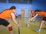 Соревнования по волейболу среди девушек, ноябрь 2014